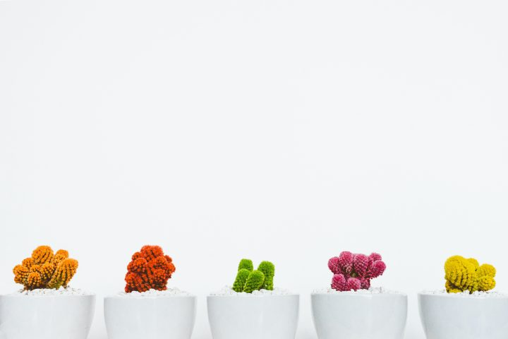 From lead to advocate or how to growth hack your business